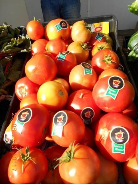 tomate de mansilla